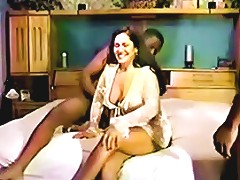 Husband Filims His Wife With Different Bulls Free Porn 3d